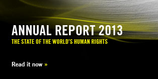 Annual Report 13